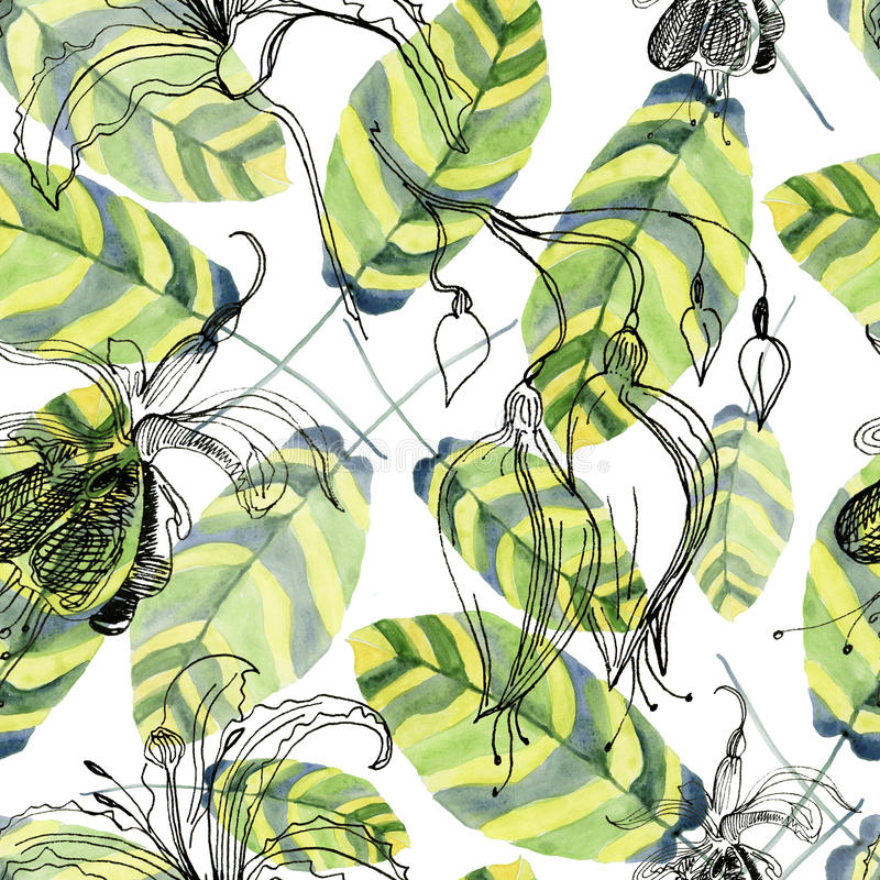 Ambiti di provenienza dipinti a mano dell'acquerello astratto con le belle foglie verdi illustrazione vettoriale