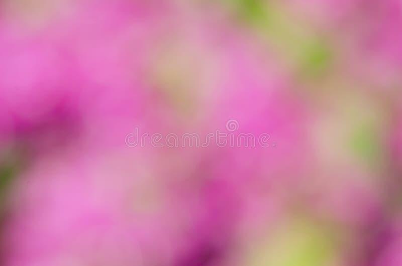 Ambiti di provenienza rosa dell'estratto del bokeh fotografie stock libere da diritti