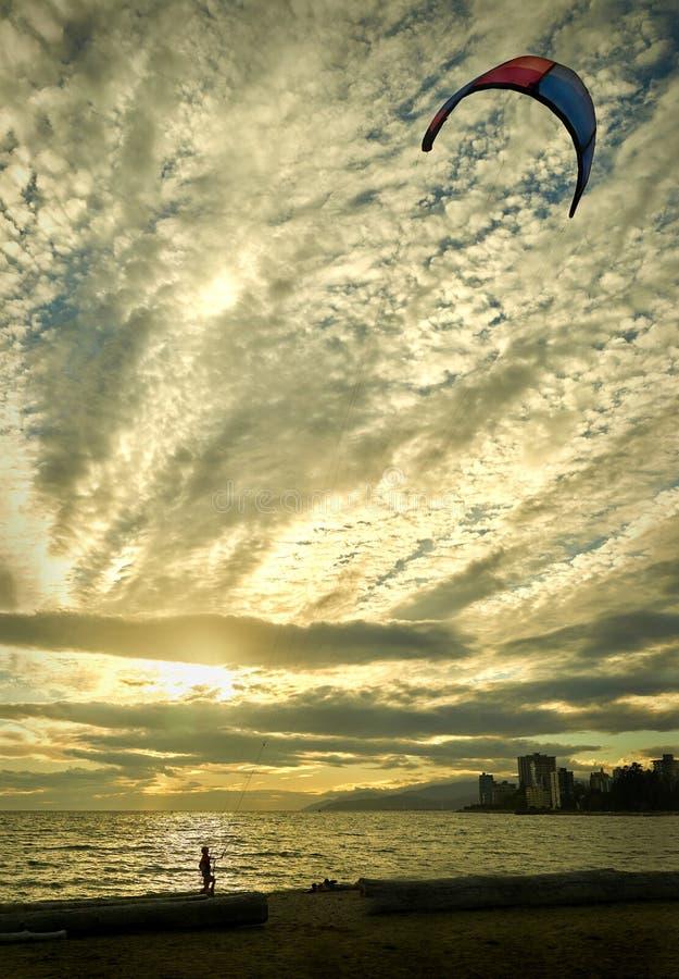 Amblesidevlieger, West-Vancouver royalty-vrije stock fotografie