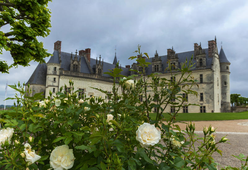 Amboise slott royaltyfri fotografi