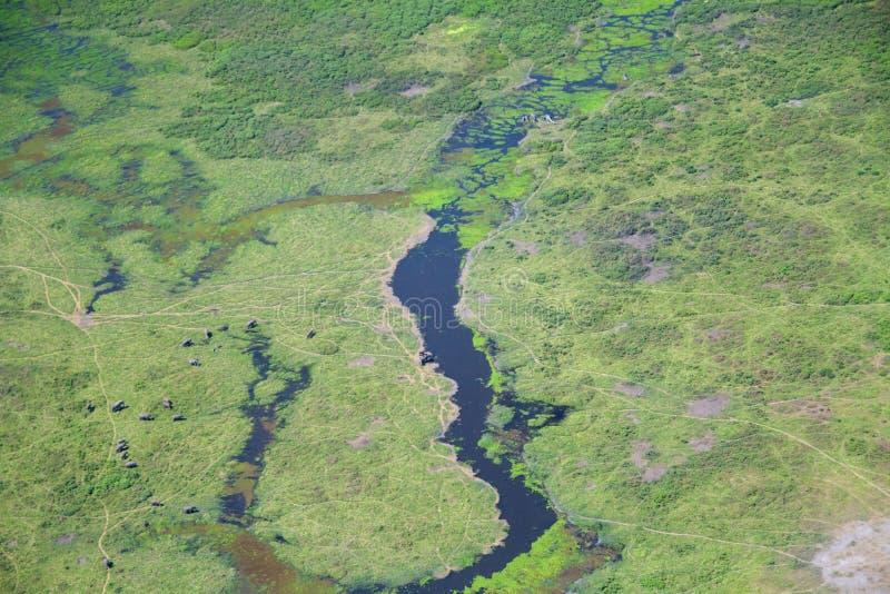 Amboseli van de Wolken die op Olifanten kijken royalty-vrije stock afbeelding