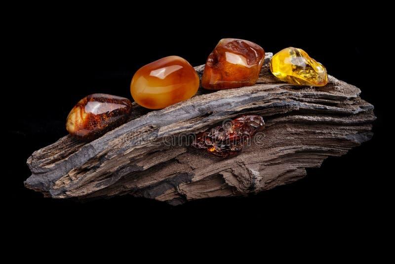 Ambra naturale Parecchi pezzi di colori differenti di ambra naturale sul grande pezzo di legno lapidato fotografie stock libere da diritti