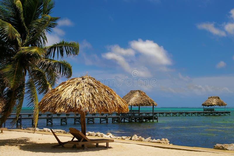 Ambre gris Caye Belize images libres de droits