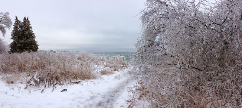 amden område nära den panoramaskidåkningswitzerland vintern arkivbild