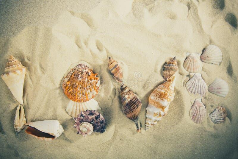 Ame la inscripción hecha de cáscaras en la arena blanca Concepto del amor imagenes de archivo