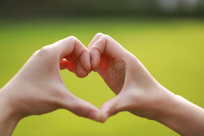 Ame la silueta de la mano de la forma en la hierba, corazón de la mano por una mano de la mujer fotos de archivo libres de regalías