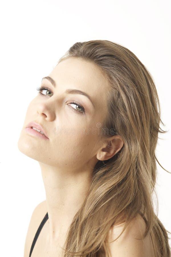 Ame meu cabeleireiro fotografia de stock royalty free
