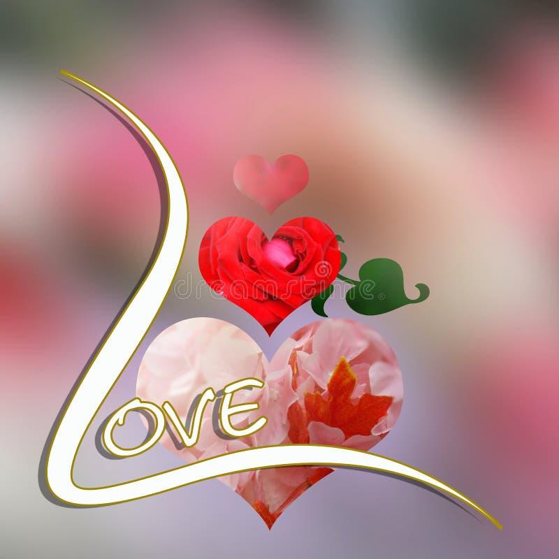 Ame o coração e aumentou flores cor-de-rosa ilustração stock