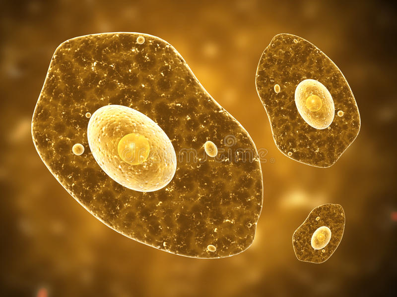 Ameba na brown tle ilustracji