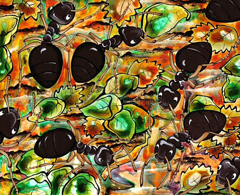 Ameisen stockfotografie