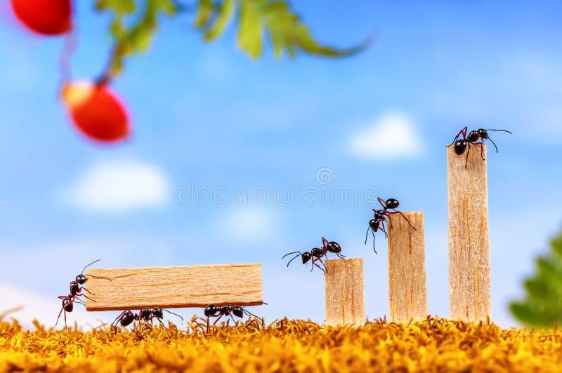 Ameisen, die Benennungsteam tragen lizenzfreies stockfoto