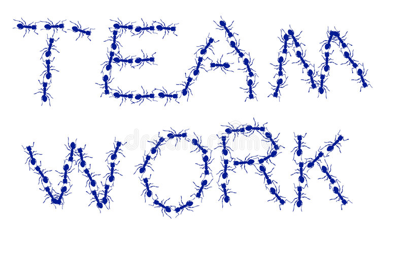 Ameisen-Team-Arbeit stockfotos