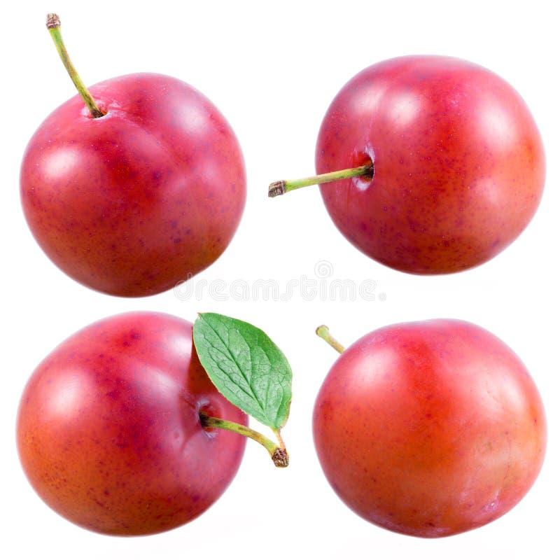 Ameixa. Coleção dos frutos isolados no branco imagens de stock royalty free