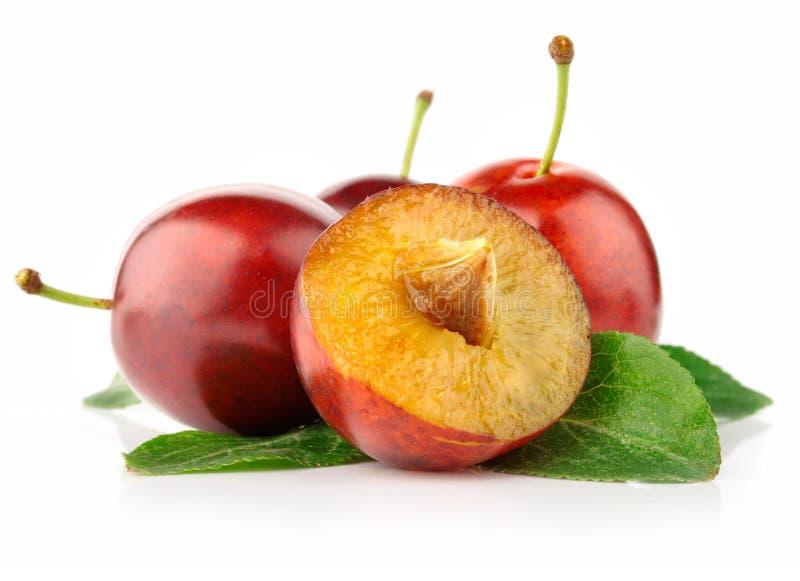 A ameixa fresca frutifica com as folhas do corte e do verde fotos de stock