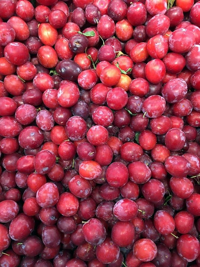 Ameixa vermelha em grandes quantidades fotografia de stock
