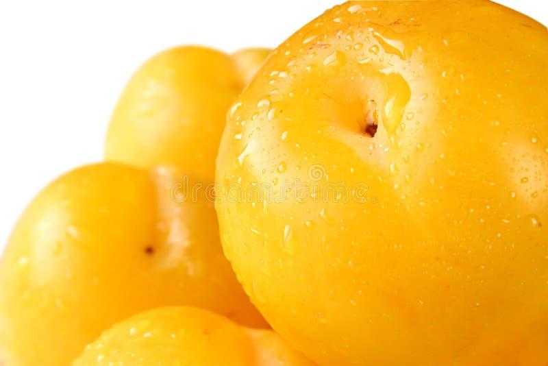 Ameixas amarelas (trajeto de grampeamento) fotos de stock royalty free