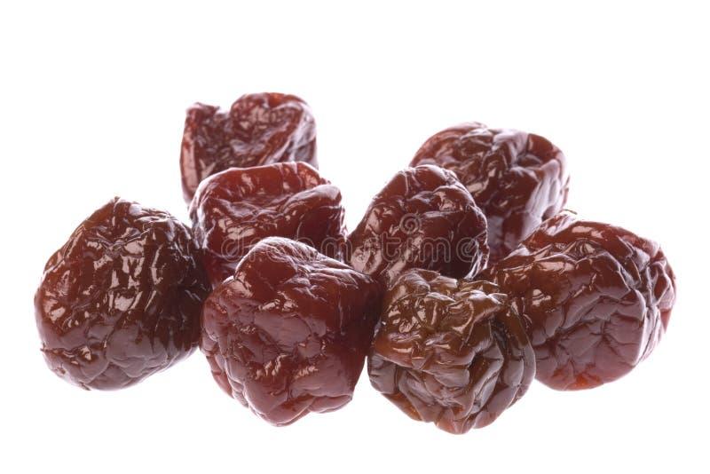 Ameixas Sweetened preservadas fotografia de stock royalty free