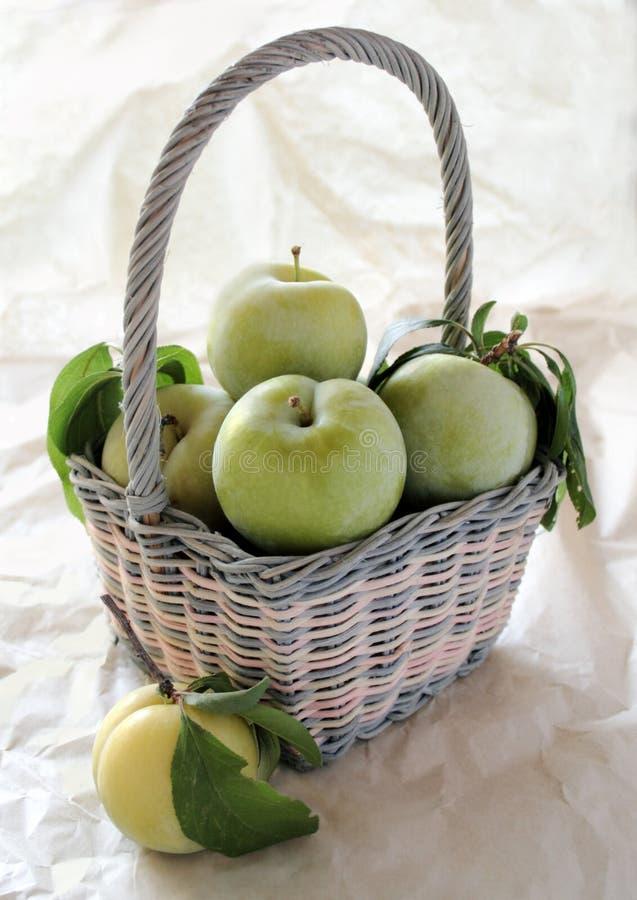 Ameixas verdes frescas em um pastel fotografia de stock royalty free