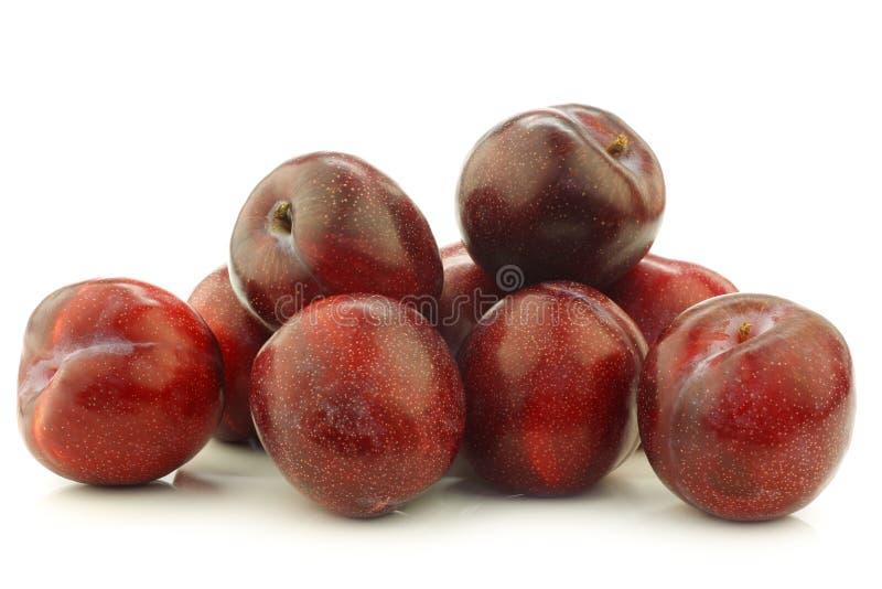 Ameixas vermelhas frescas foto de stock royalty free
