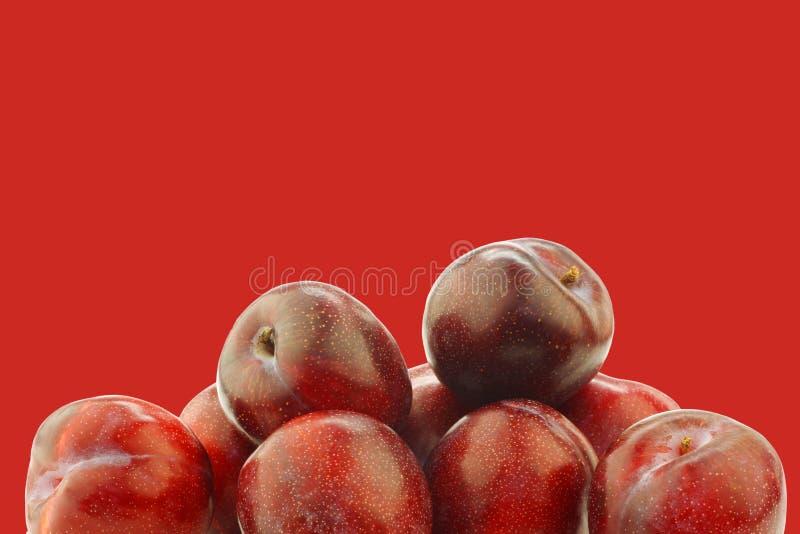 Ameixas vermelhas frescas imagem de stock royalty free