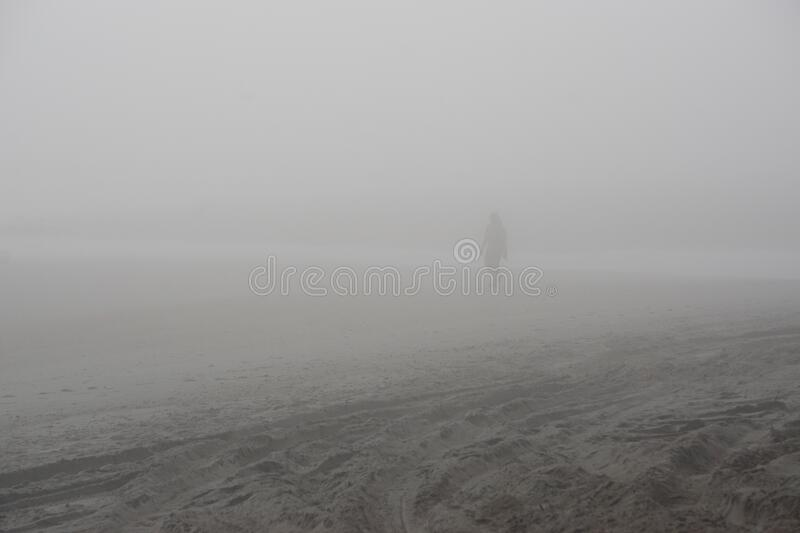 Amelia Island, Florida, USA: Silhouettes in the fog at American Beach royalty free stock photo