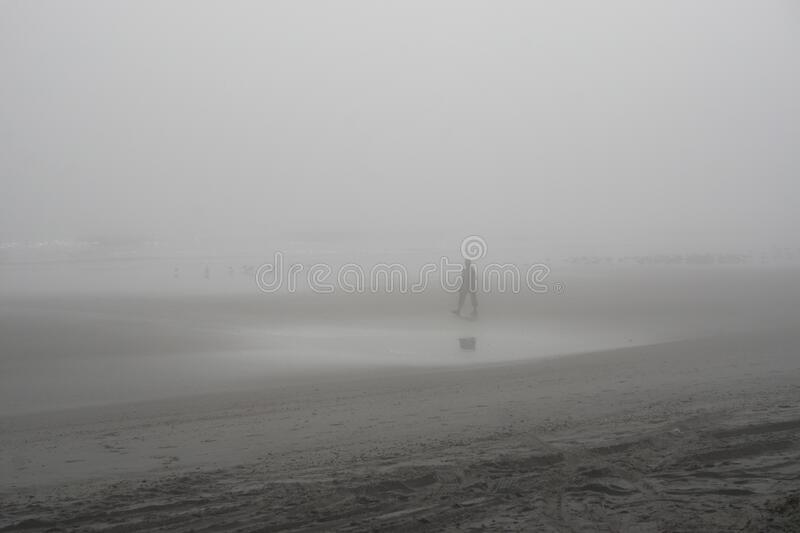 Amelia Island, Florida, USA: Silhouettes in the fog at American Beach royalty free stock photography