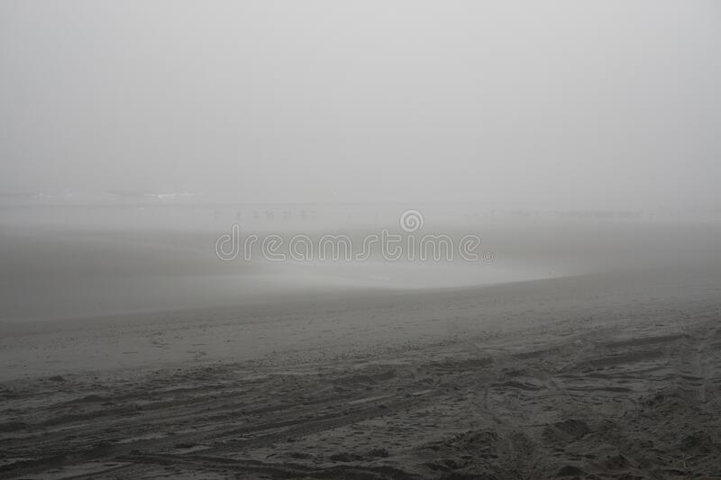 Amelia Island, Florida, USA: Silhouettes in the fog at American Beach royalty free stock images