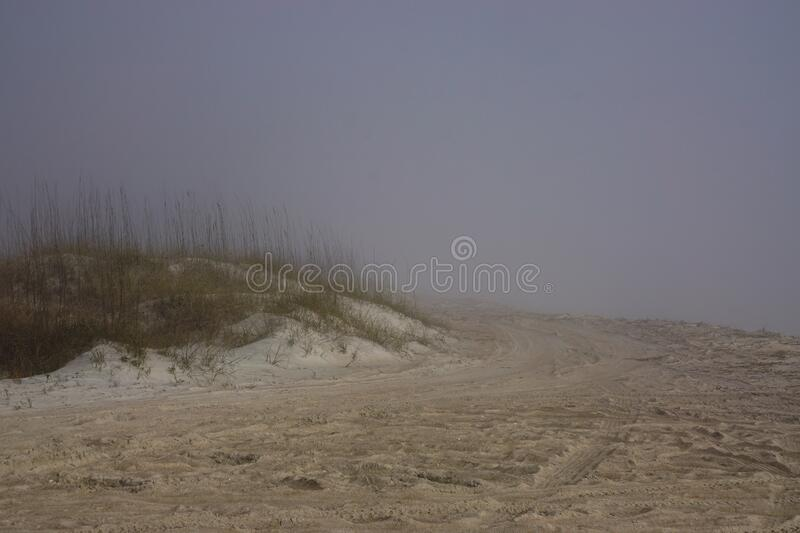 Amelia Island, Florida, USA: Tire tracks in the sand at mist-covered American Beach royalty free stock photos