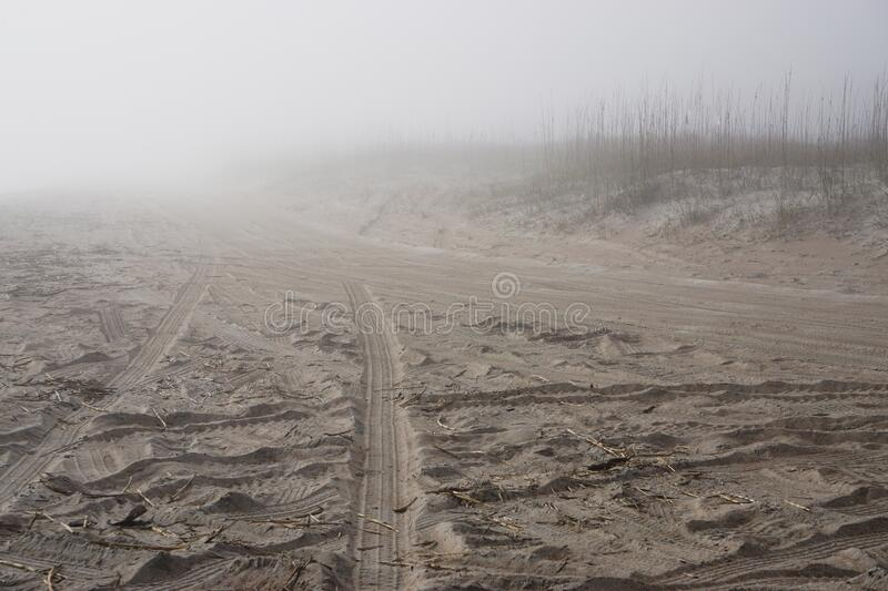 Amelia Island, Florida, USA: Tire tracks in the sand at mist-covered American Beach stock photos