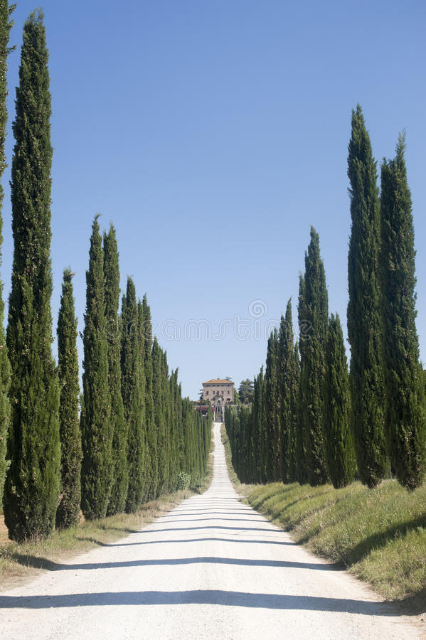 Amelia (Umbria, Italy) - Old villa and cypresses stock images