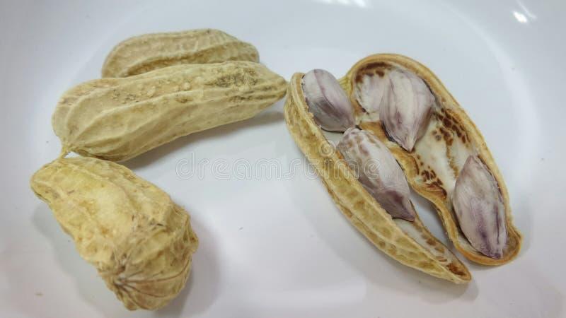 Amendoim fervido foto de stock royalty free