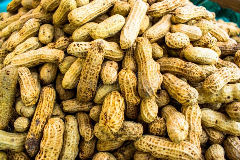 Amendoins fotos de stock royalty free