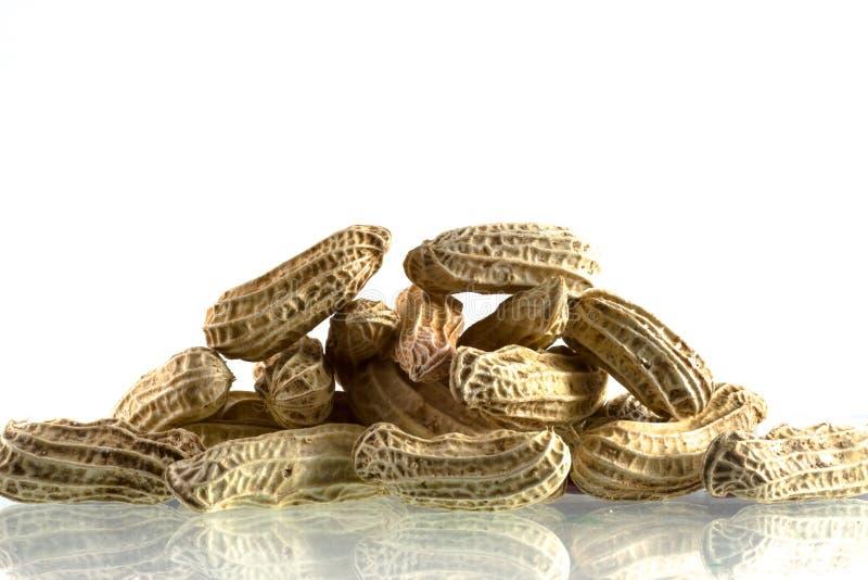 Amendoins imagem de stock royalty free