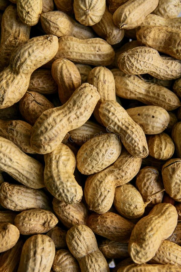 Amendoins crus em Shell foto de stock royalty free