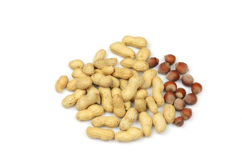Amendoins e avelã da amêndoa foto de stock