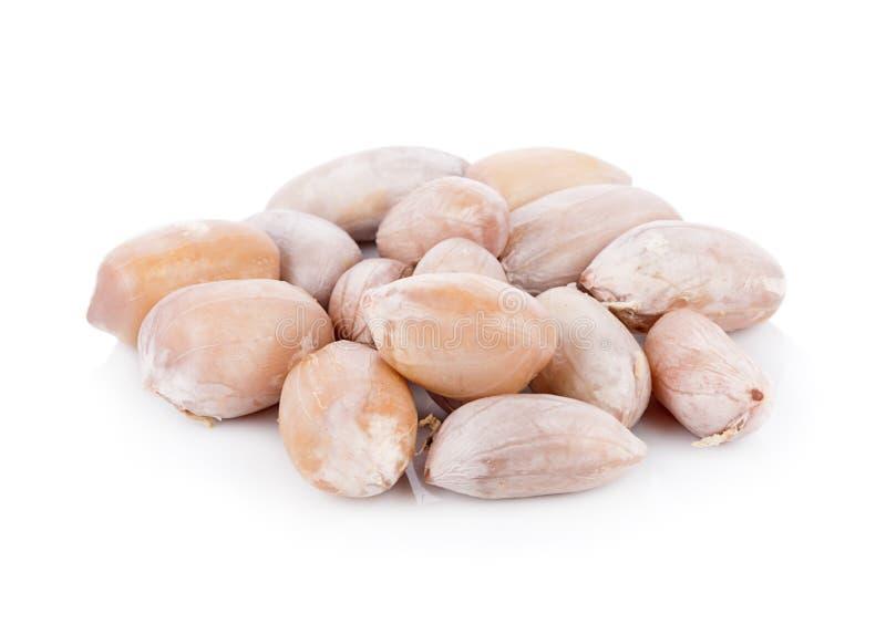 Amendoins fervidos no fundo branco imagens de stock royalty free