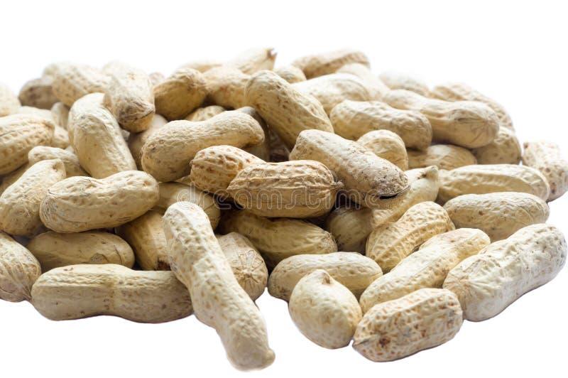 Amendoins Roasted e secados na forma estranha no fundo branco fotografia de stock