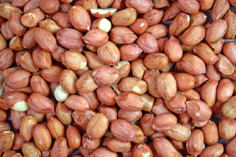 Amendoins Saudável fotografia de stock royalty free