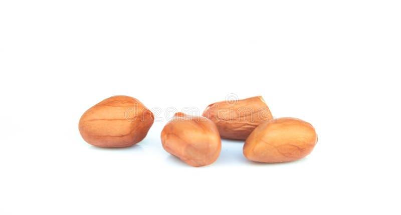 Amendoins secados isolados sobre no fundo branco imagem de stock