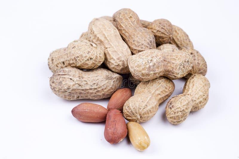 Amendoins secados no close up no fundo branco imagens de stock royalty free