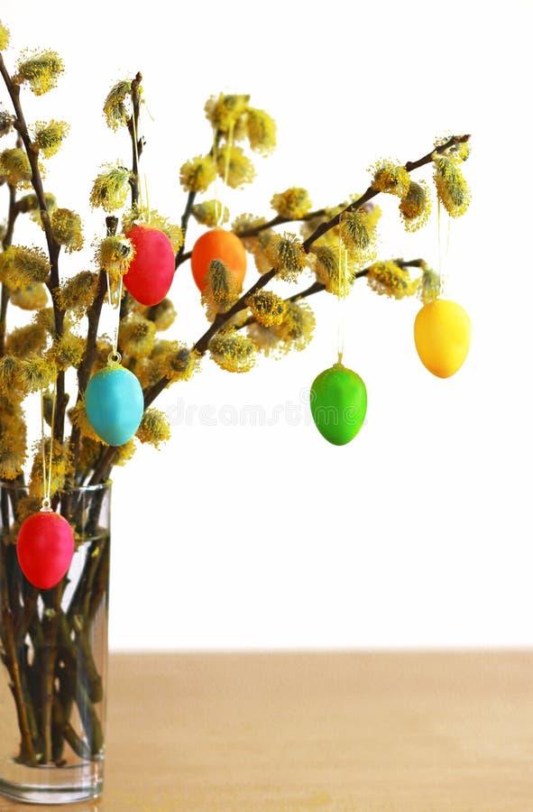 Amentos del sauce y huevos de Pascua coloreados imagenes de archivo