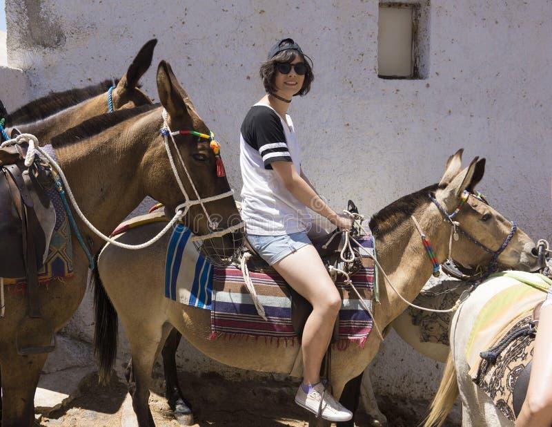 Amerasian teenager sull'asino in Santorini fotografia stock