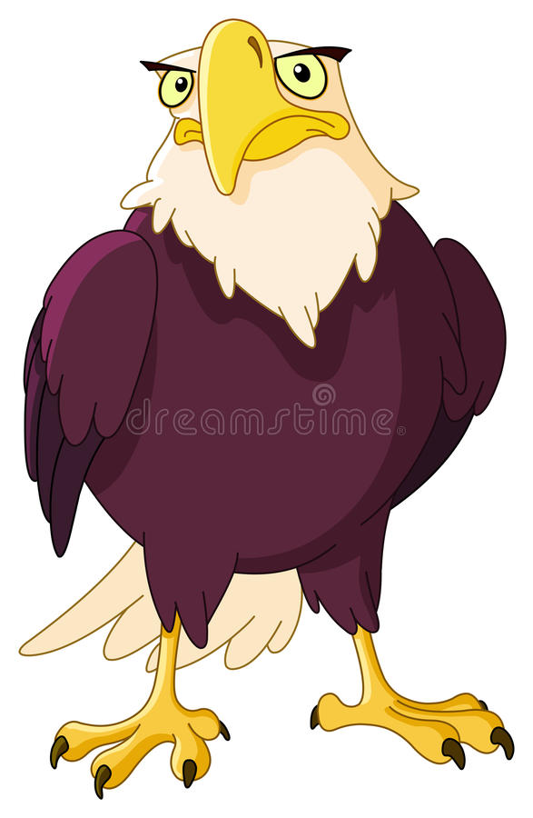 American bald eagle stock illustration
