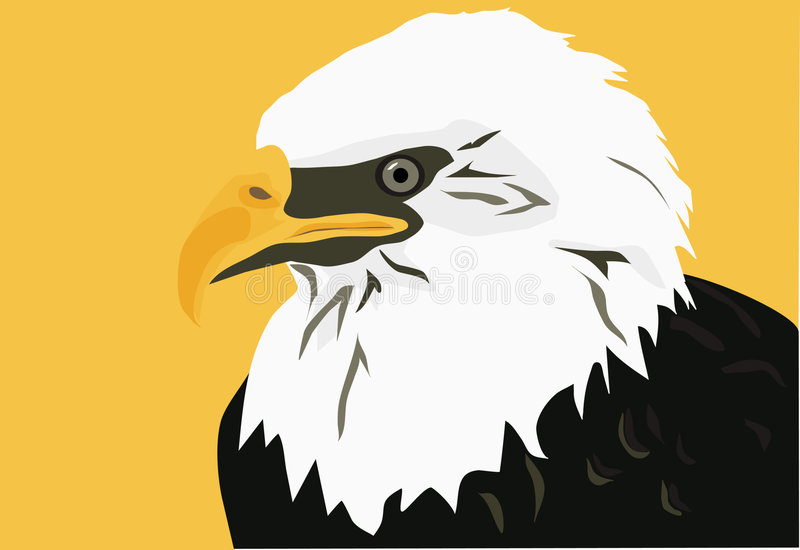 Download American Bald Eagle stock vector. Image of honor, country - 2354997