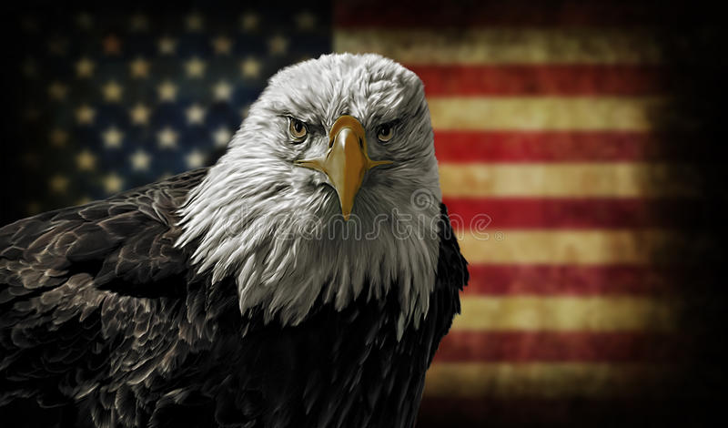 American Bald Eagle on Grunge Flag. Oil painting of a majestic Bald Eagle against a photo of a battle distressed American Flag stock photography