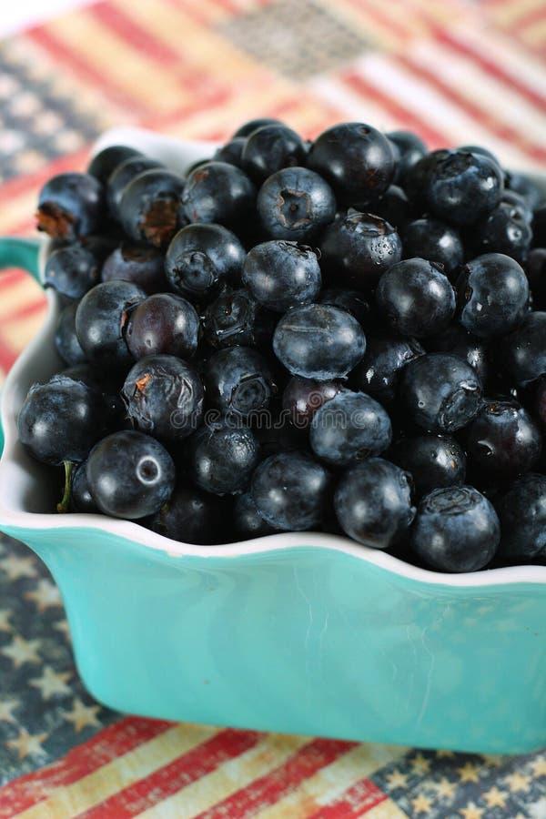 American Blueberries Stock Photo