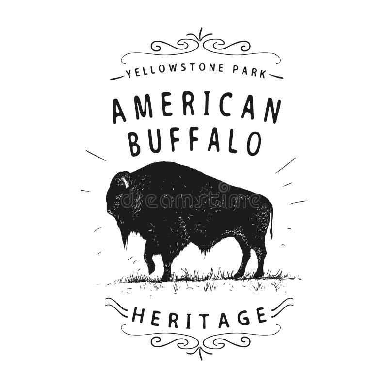 American buffalo stock illustration