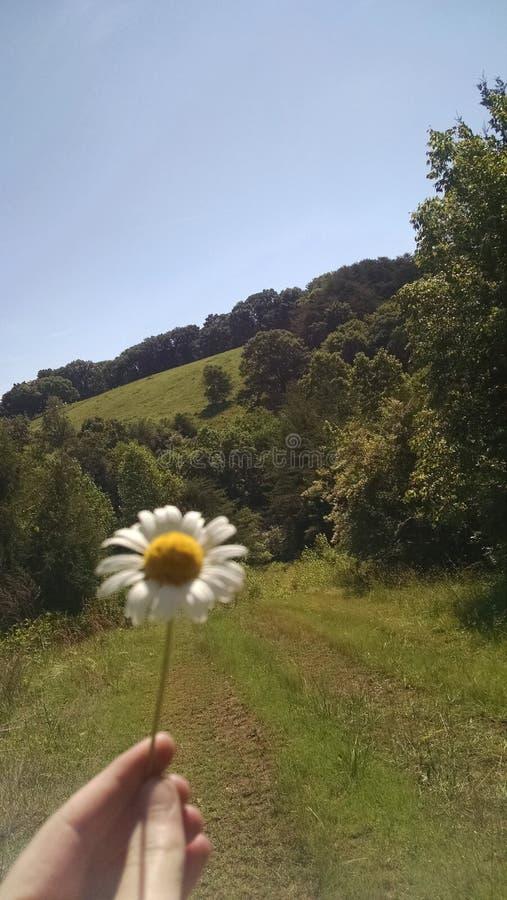 American countryside stock photos