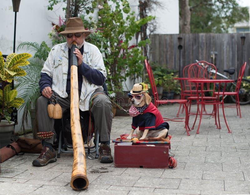 American Didgeridoo (Didjeridu) royalty free stock images