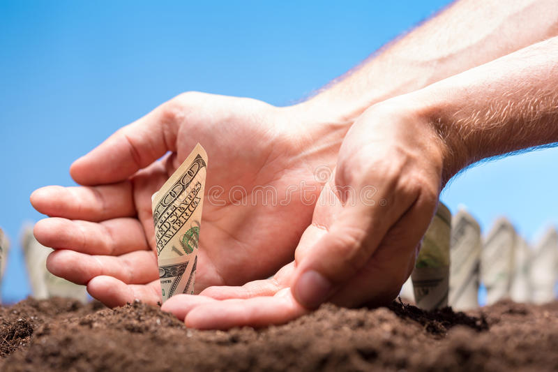 American dollars grow from the ground stock images